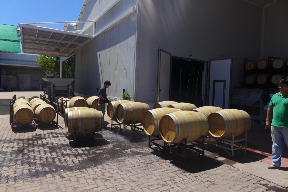 вино Порто зреет на солнце